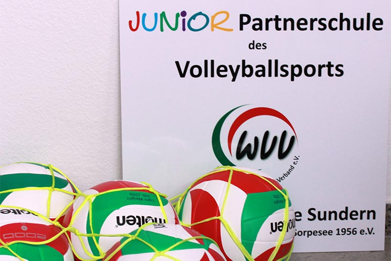 Juniorpartner des Volleyballsports_02